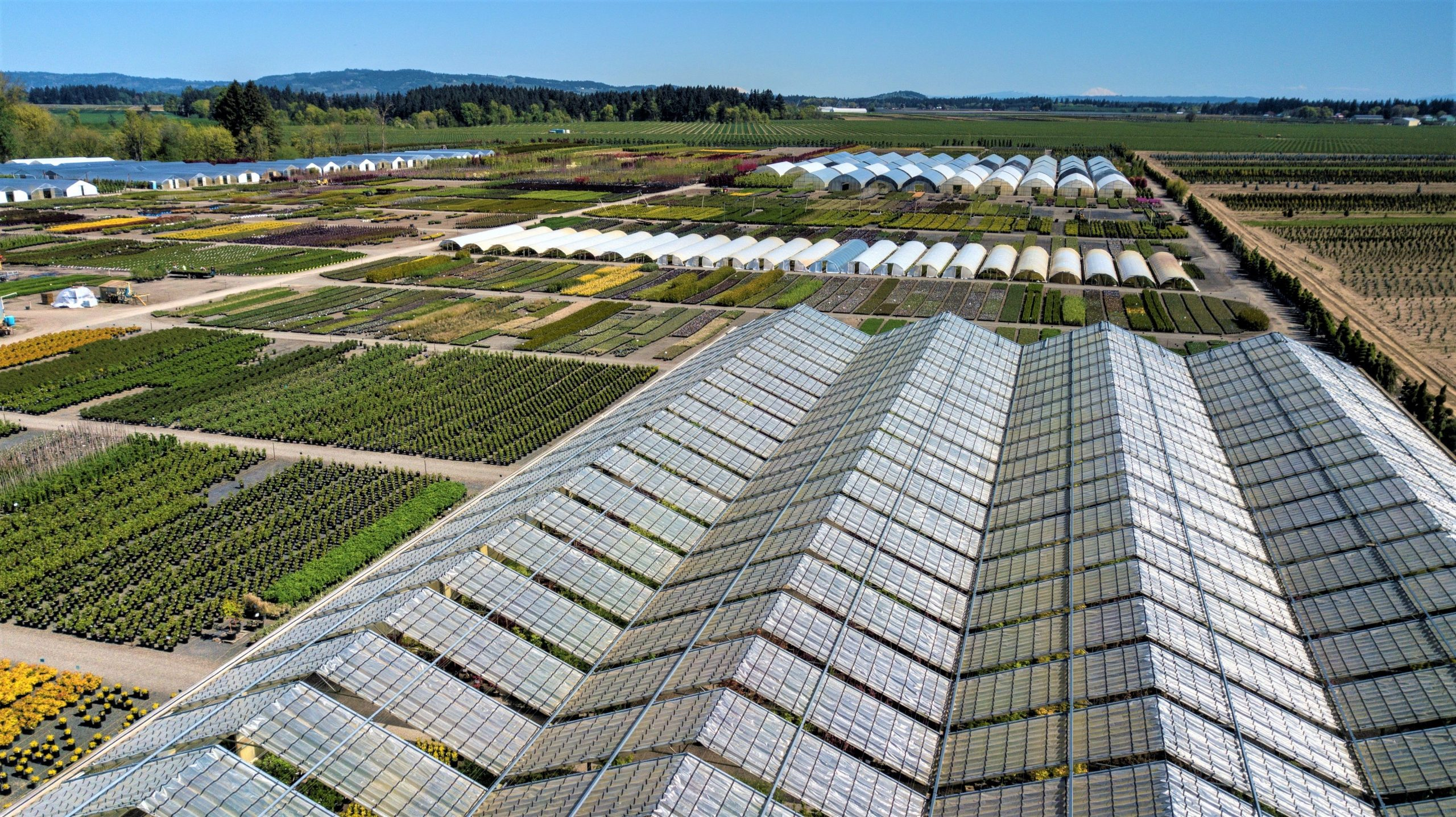 aerial view of garden and solar panels